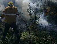 Un incendio forestal alertó a los vecinos del barrio Las Chacras
