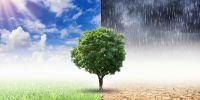 [AUDIO] Informe del Grupo Intergubernamental de Expertos sobre el Cambio Climático