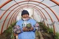 Se lanzó la segunda etapa del programa Invernaderos en Bariloche