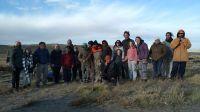 Extraen árboles exóticos de Bariloche y los plantan en localidades de la Región Sur